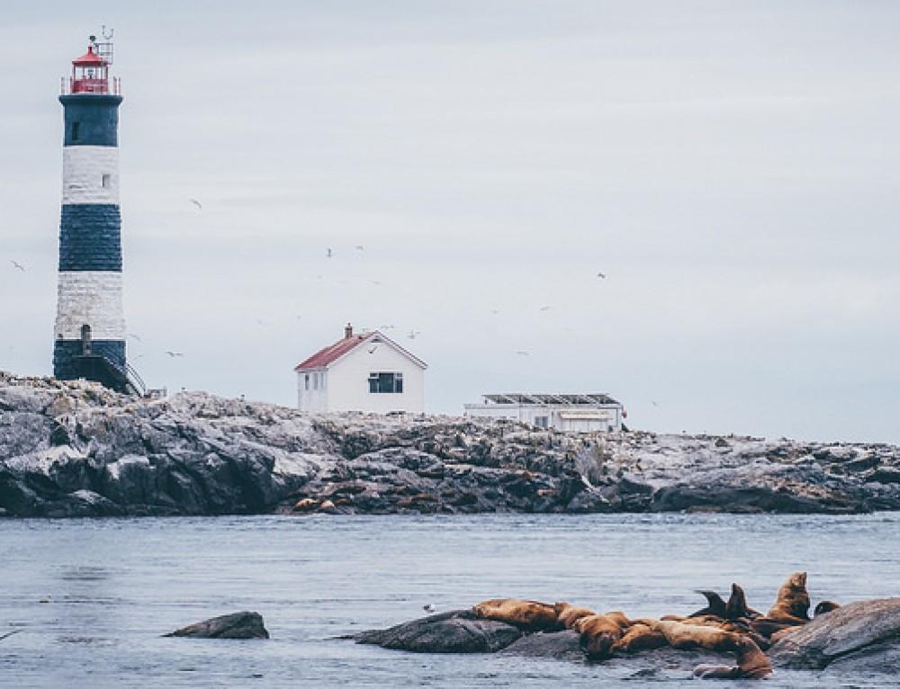 Vancouver Island, Victoria e le balene- Giorno 2