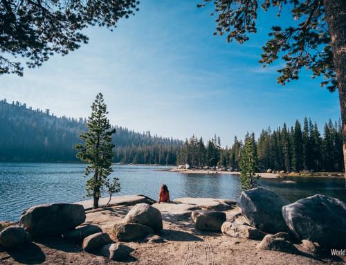 Da Tuolumne a Mono Lake – road trip giorno 5