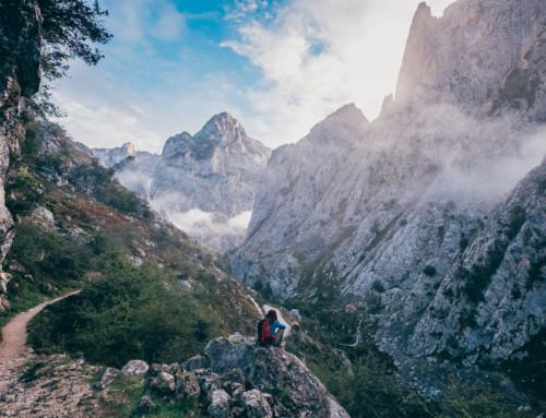 Cantabria e Asturia, 4 giorni tra oceano e montagna