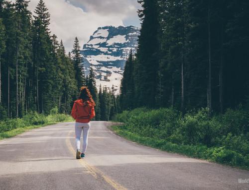La giusta Strada da Percorrere