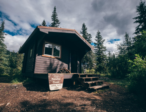 Aspen flats Cabin, finalmente un tetto sopra la testa