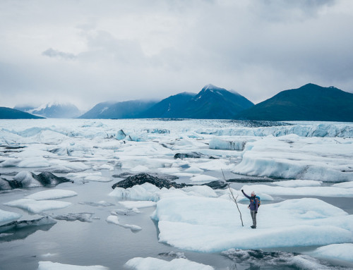 Ultime avventure al Portage e Knik Glacier
