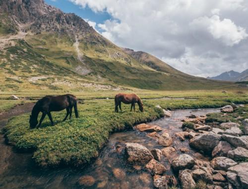 Jyrgalan Valley – Kyrgyzstan