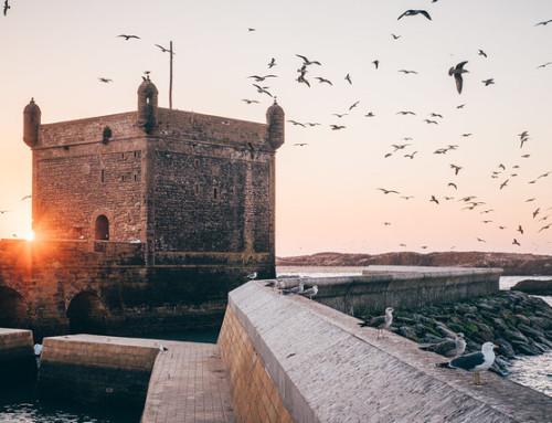 Marocco, dal deserto a Essaouira e Marrakech