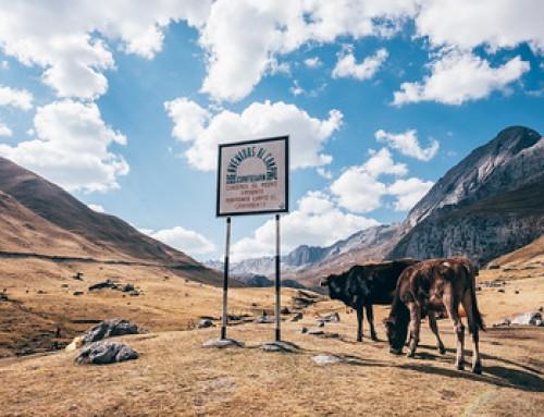 Huayhuash trek – Giorno 1 Verso la laguna Carhuacocha